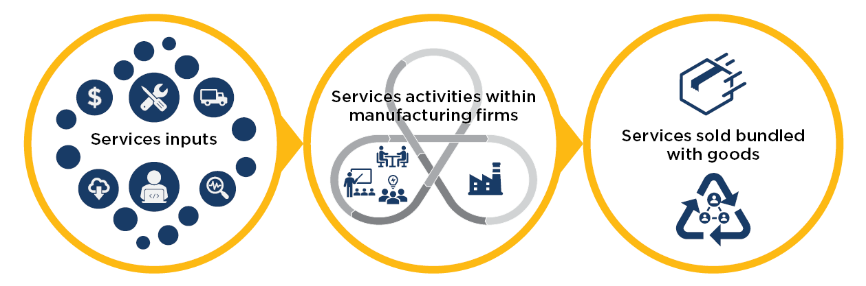 Services input, services activities within manufacturing firms, services sold bundled with goods